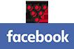 Vinhos com Moderação Fenadegas Facebook